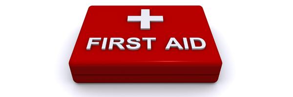 1ο Σεμινάριο για εκπαιδευτικούς: Πρώτες Βοήθειες – Βασική Υποστήριξη ζωής